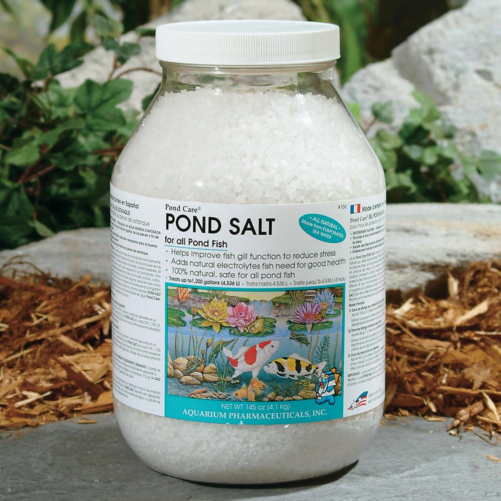Should you add salt to a koi pond k o i for Salt in koi pond