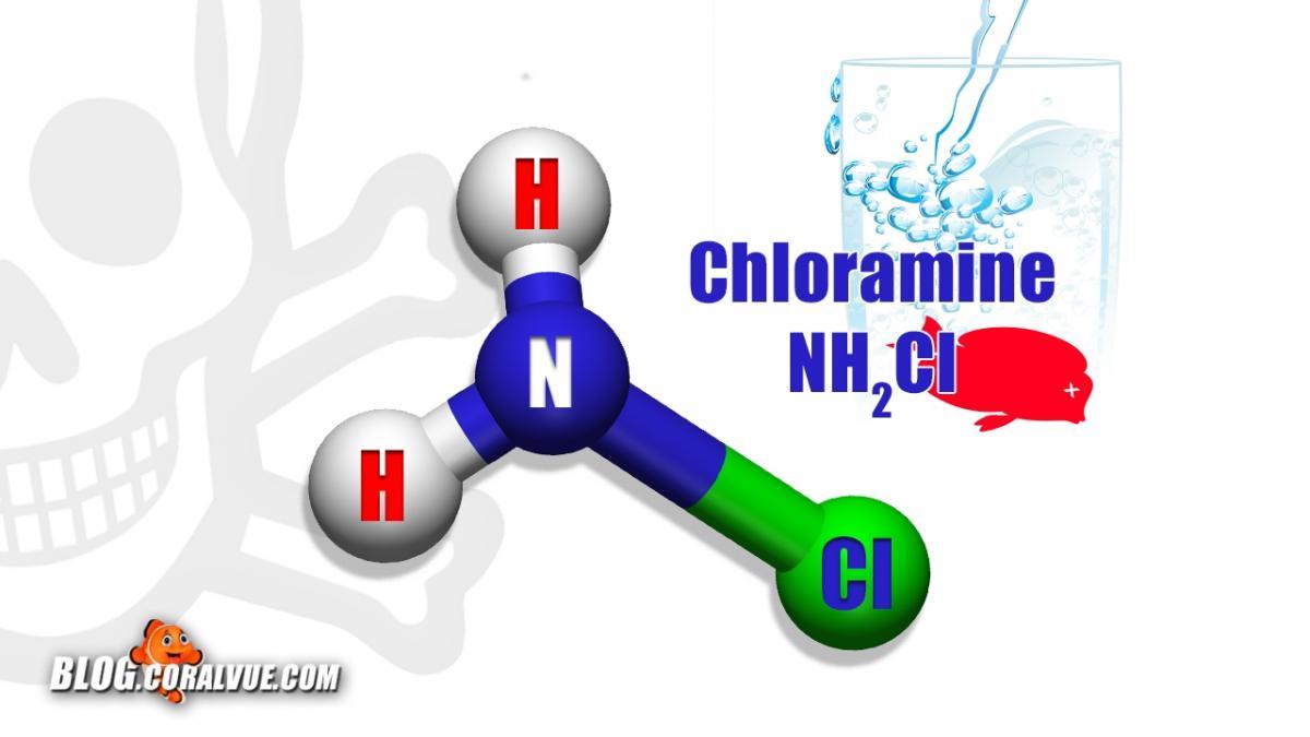Chorine And Chloramines