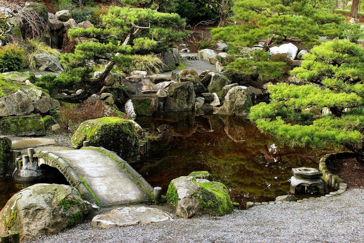 Beautify your pond with Japanese Garden features | K.O.I.