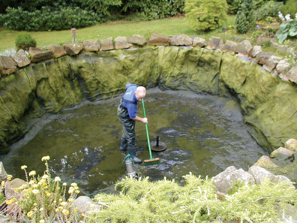 Pond cleanout proceedure k o i for How to make koi pond water clear